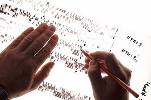 Person studying DNA