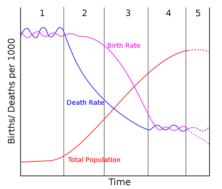 The Demographic Transition Model, including stage 5