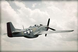 World War II TF-51 Mustang in Sky - Aged