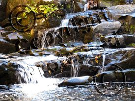Watermarked photo of a cascading stream