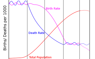 What Is The Demographic Transition Model