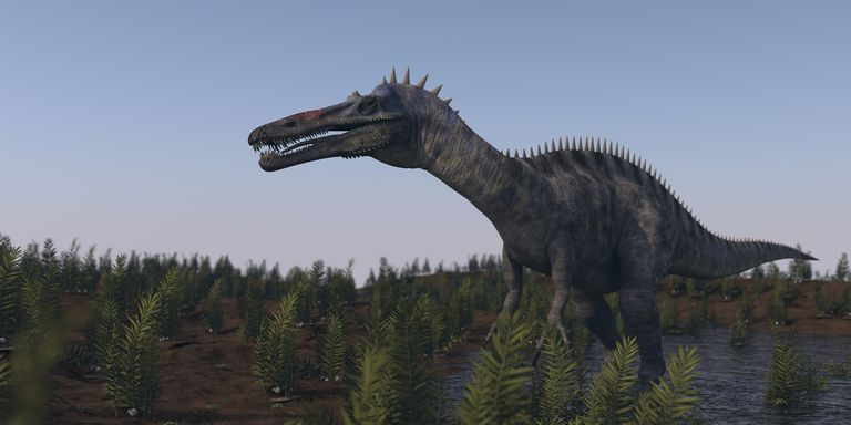 image of the dinosaur