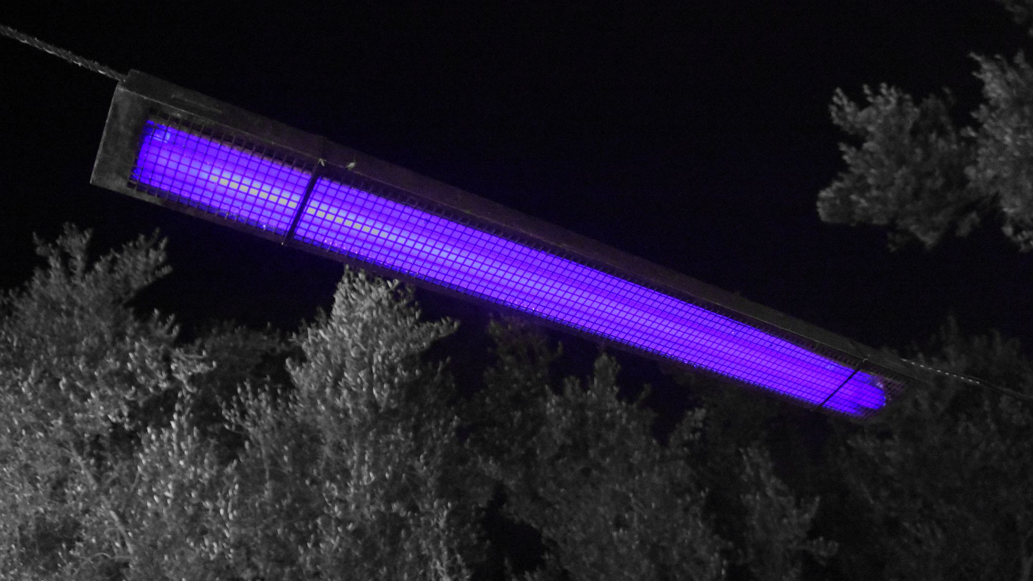 What Is A Black Light And How Does It Work