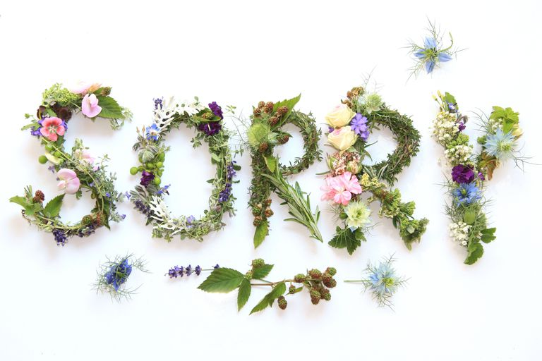 sorry spelled out in greenery