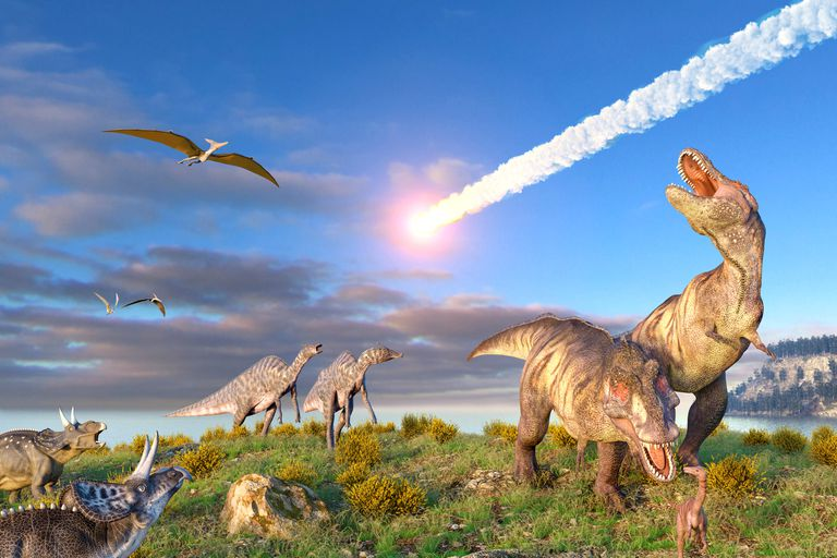 A variety of dinosaurs watching as a large meteor streaks across the sky