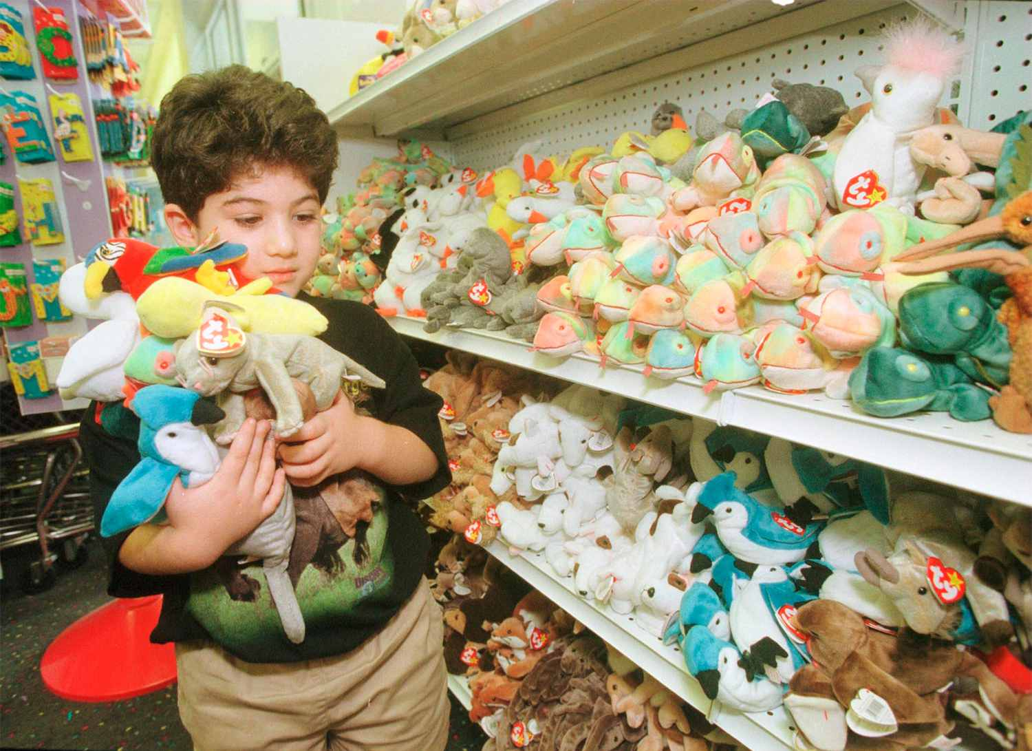 a36d6b28004 Donate. Child holding Ty beanie babies at a store