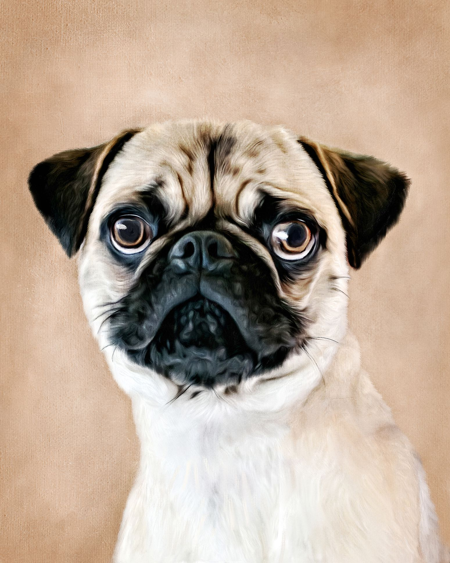 Tips for Still-Life Painting Dogs