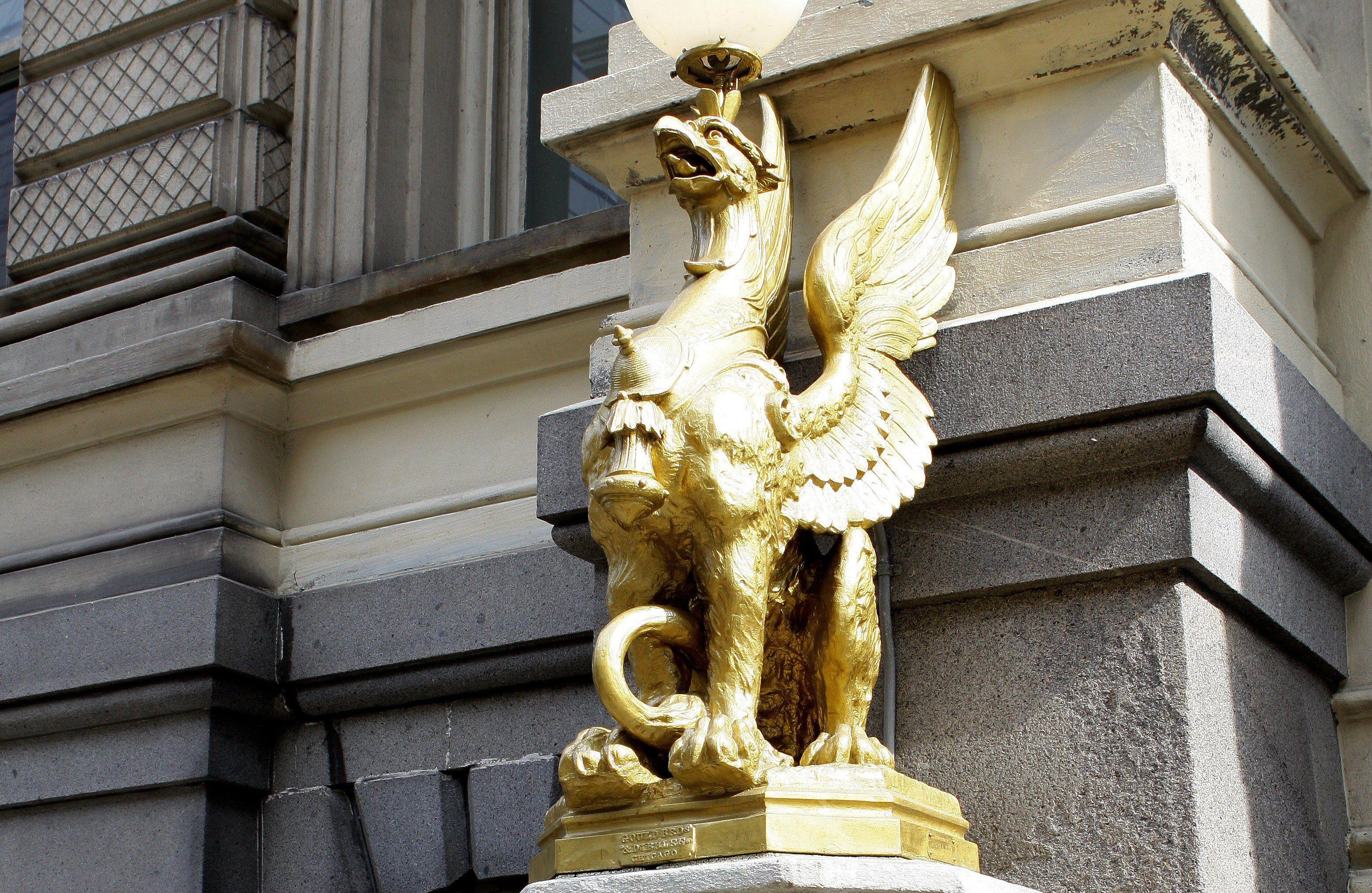 эскизу обручальных золотой грифон волгоград фото питбуля дворняги