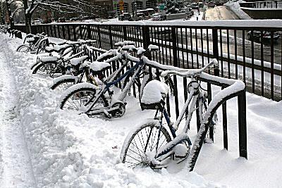 Snowy Bikes at Harvard University
