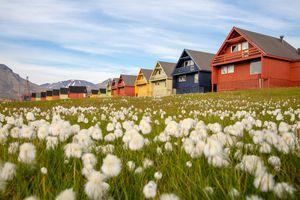 Longyearbyen houses