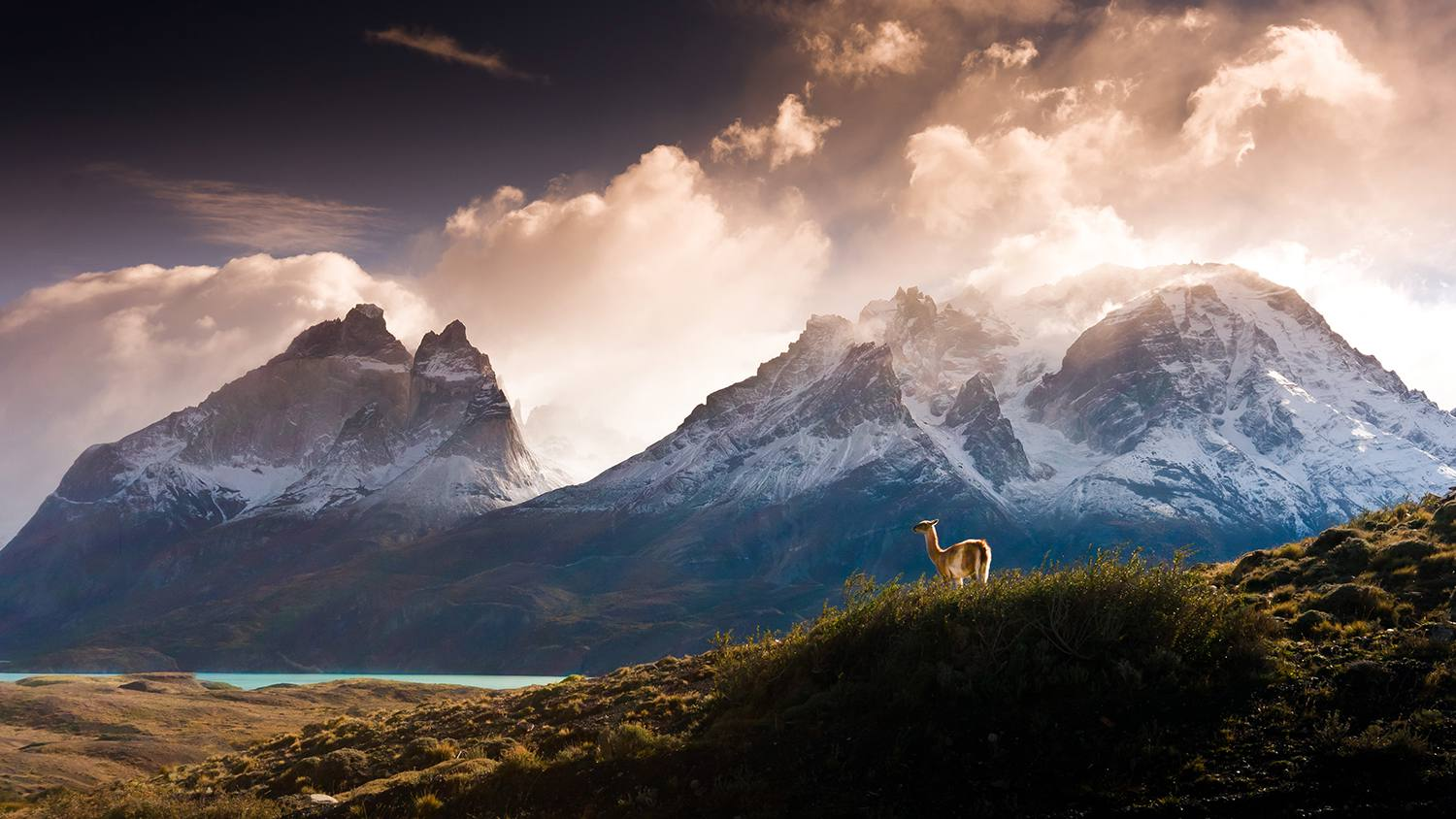 Cinematic photograph of Cuernos del Paine, Patagonia, Chile.
