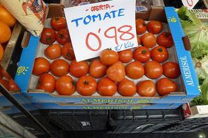 Spanish writing for tomatoes on sale