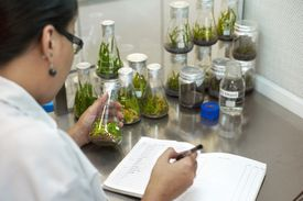 A lab technician writing notes in her logbook