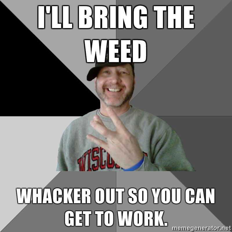 The Best Weed Jokes And Memes For 420