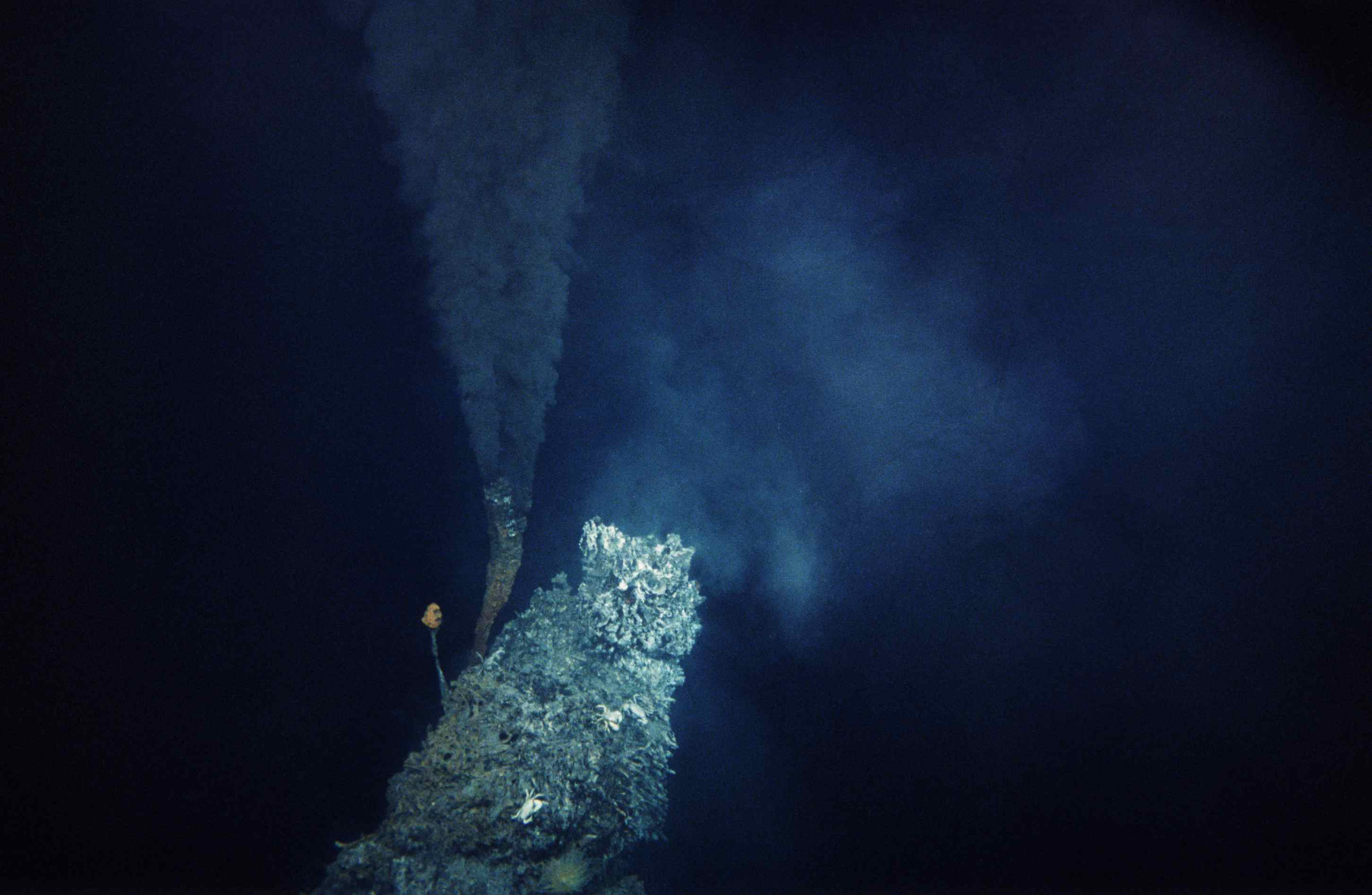 Black Smoker hydrothermal vent in the Pacific Ocean.