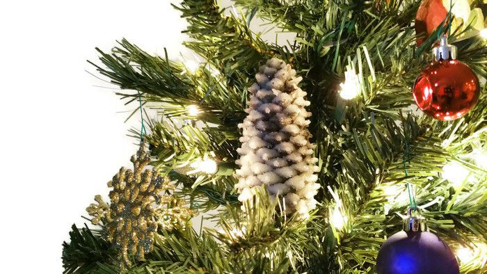 It only take a couple of hours to turn a plain pinecone into a crystal pinecone, plus it's really easy!