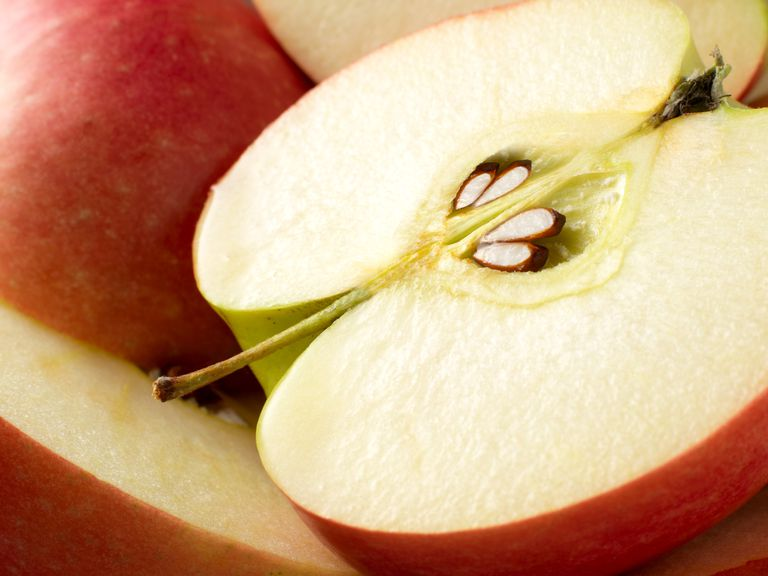 Celebrate Johnny Appleseed Day