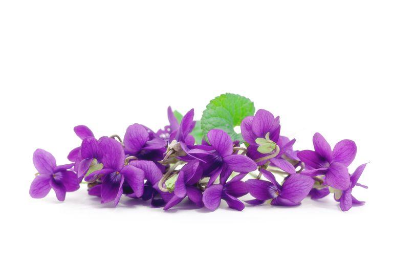 You can simulate the odor of violets using a chemical reaction.