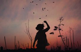 Silhouette of a child standing in a field against a setting sun.