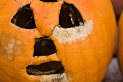 how to keep a carved pumpkin from rotting