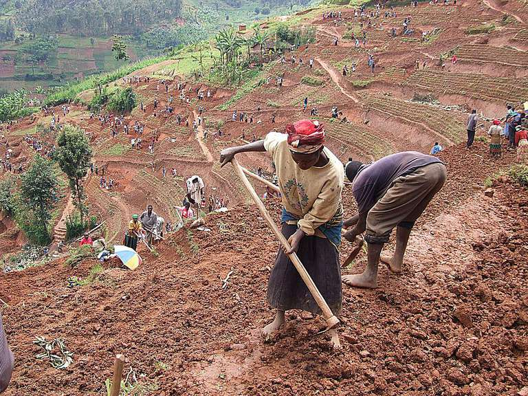 People working fields in Africa.