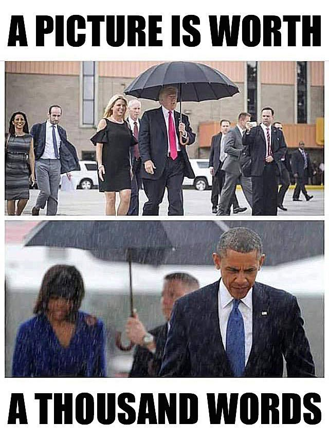 A Picture Is Worth Thousand Words