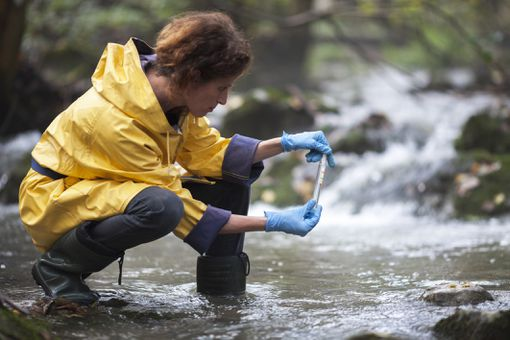 Female Biology Researcher Examining Water of a Stream