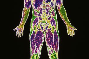 The most abundant element in the human body by mass is oxygen.