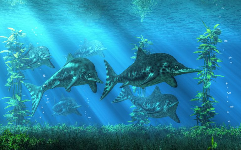 drawing of Ichthyosaurs swimming in the ocean