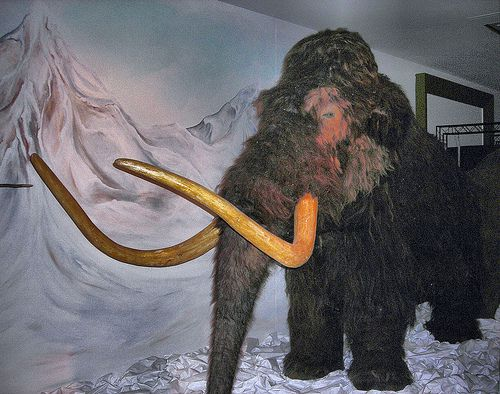 Woolly Mammoth at London's Horniman Museum