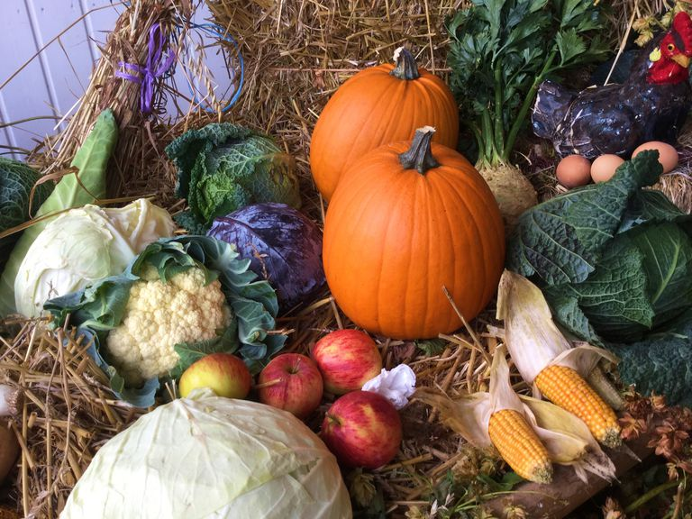 pumpkins and other vegetables