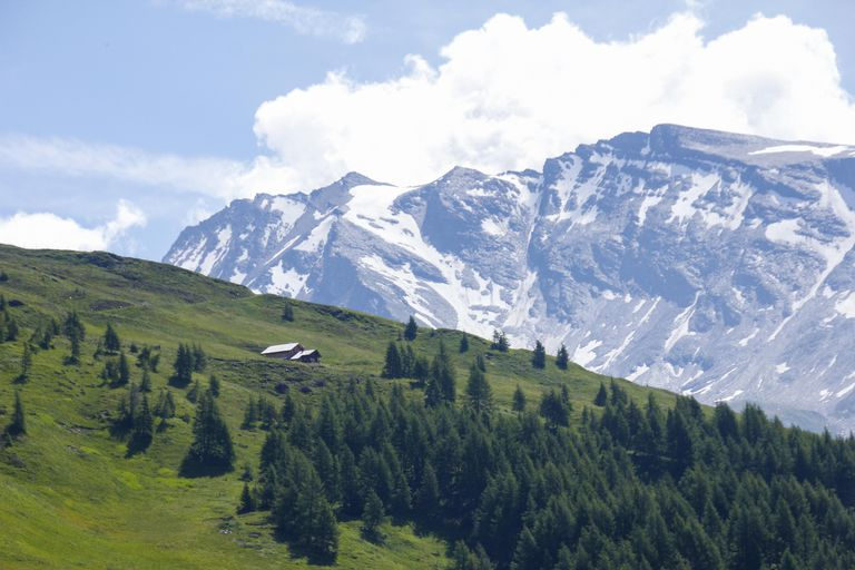 The French surname Dumont means of the mountain.
