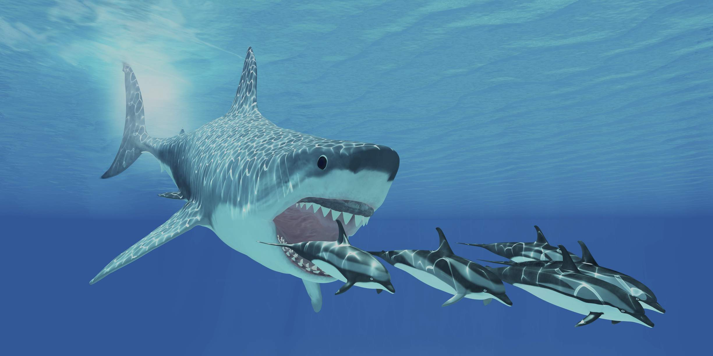 10 interesting facts about megalodon