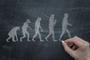 Person drawing human evolution on chalkboard.