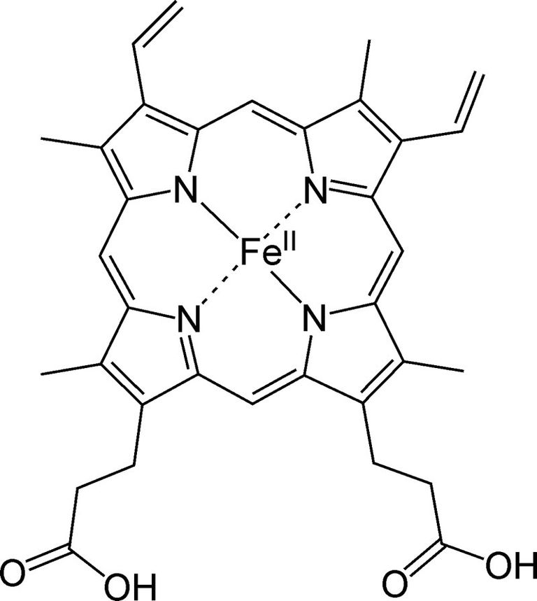 This is the chemical structure of heme B.