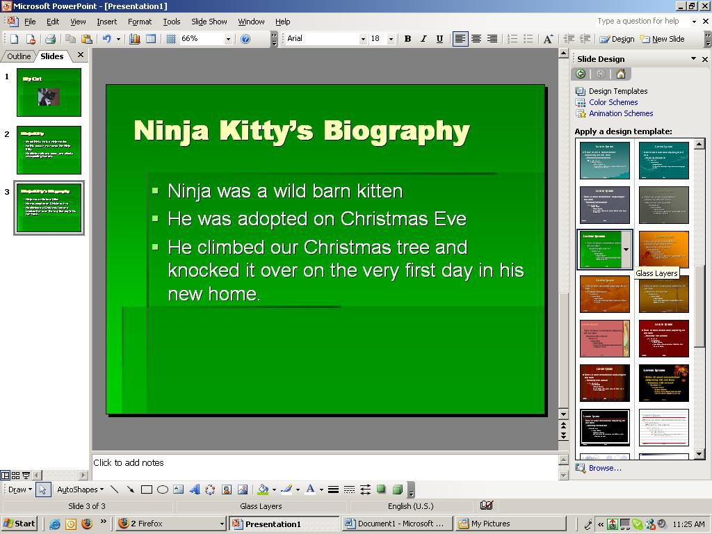 Screenshot of a PowerPoint slide with the title, Ninja Kitty's Biography