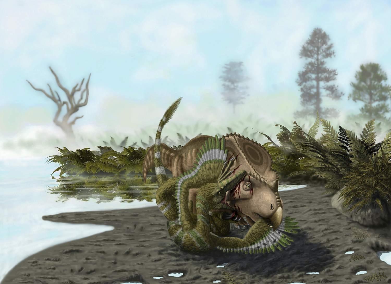 Velociraptor Attack