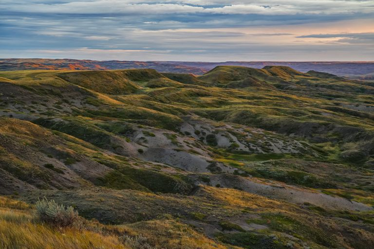 view of grassy hills in Saskatchewan