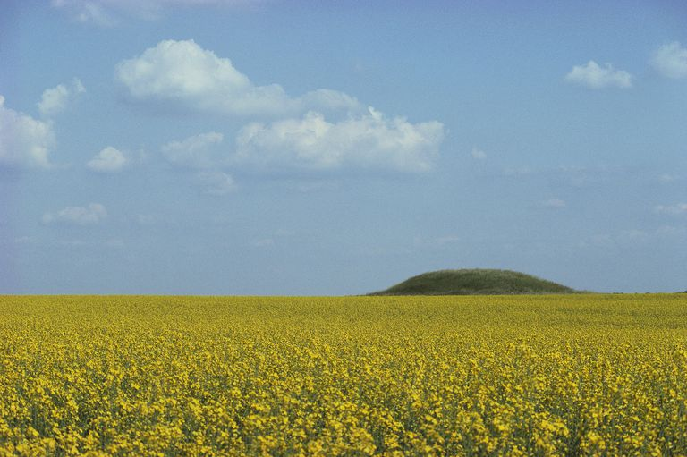 "The Law surname often derived from an old word for ""burial mound,"" such as this barrow cemetery in Wilsford, England."
