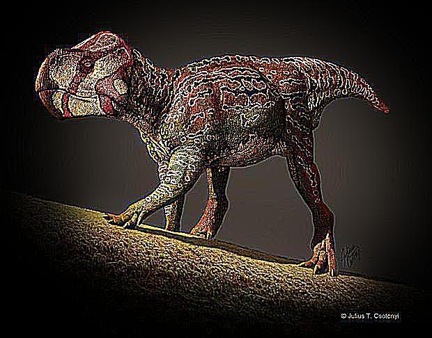 unescoceratops
