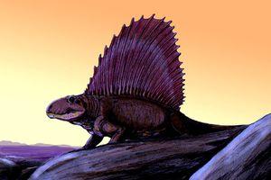 Dimetrodon drawn against the sunset