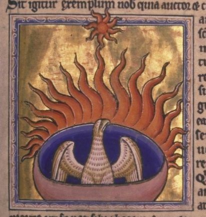 Phoenix from the Aberdeen Bestiary Project