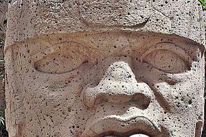 Olmec Colossal Head, San Lorenzo Tenochtitlan, Mexico
