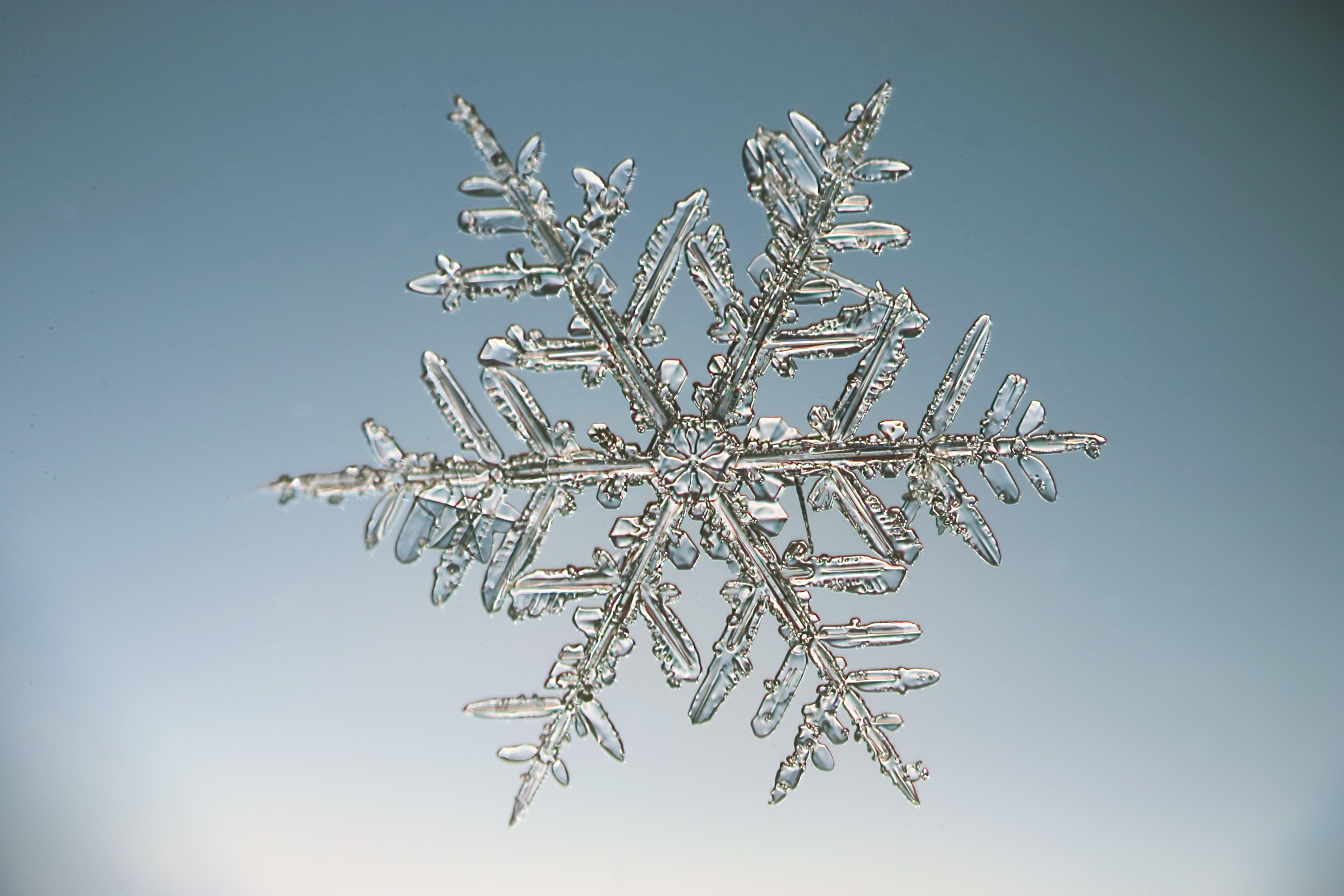 Snowflakes display hexagonal symmetry.
