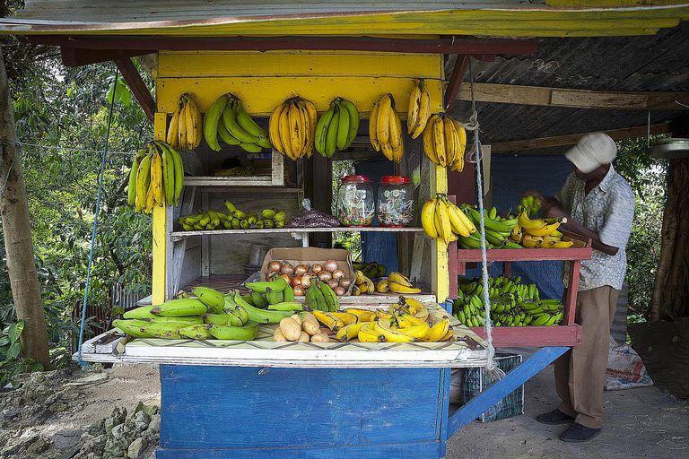 Roadside Fruit Stall, Boston Bay, Jamaica