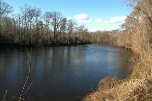 Nottoway River, Near Courtland, Virginia