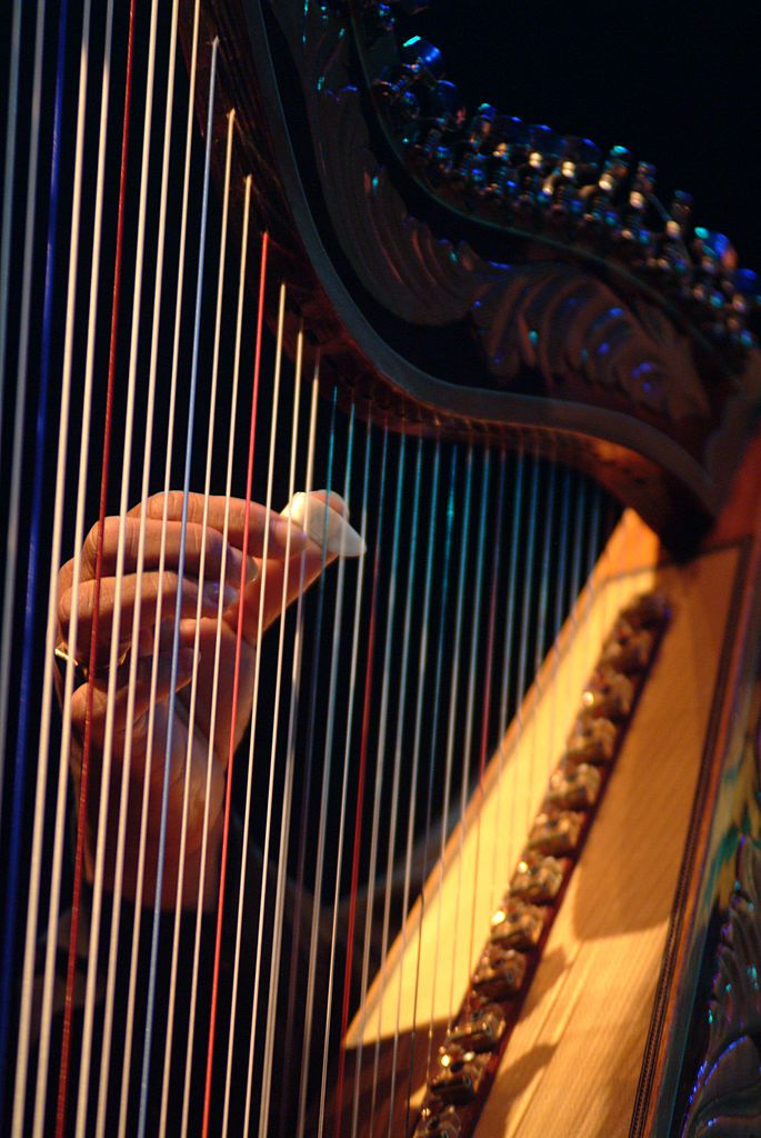 Close-up of musician playing harp