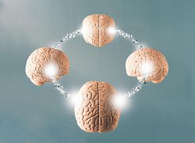 multiple brains connected