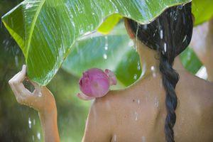 woman under leaf in rain