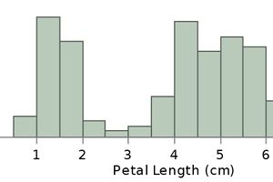 A histogram showing frequency of petal length